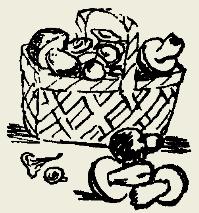 Макароны с ветчиной, грибами и томатом
