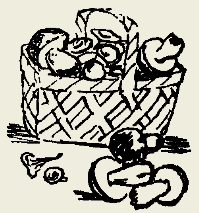 Грибы тушёные с луком и вином