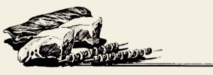 Свинина тушёная с хлебным квасом и грибами