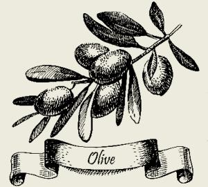 Масло с маслинами
