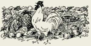 Курица тушёная в томатном соусе с орехами