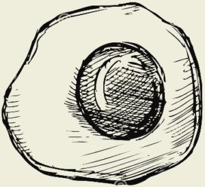 Яичница