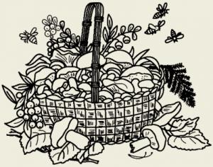 Грибы тушёные