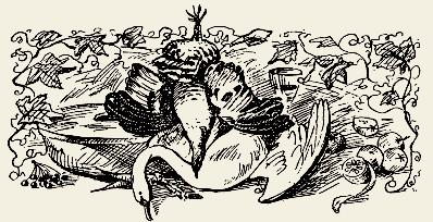 утка тушёная с грибами по-польски