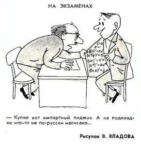 Цыплята тушёные по-московски (русская кухня)-3