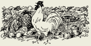 Курица тушёная по-чувашски