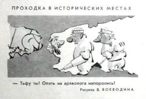 Салат из печени с грибами (белорусская кухня)-3