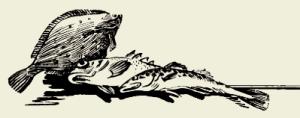 Котлеты рыбные под молочным соусом с сыром