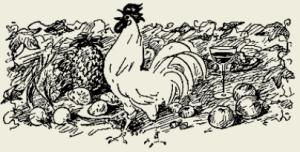 Куриные потроха тушёные в сметанном соусе с грибами