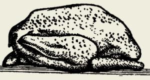 Фрикасе из курицы с зелёной фасолью и грибами