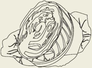 Капуста тушёная
