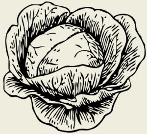 Лечо с капустой